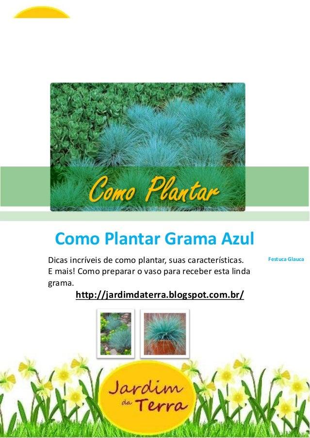Como Plantar Grama Azul Festuca Glauca http://jardimdaterra.blogspot.com.br/ Como Plantar Grama Azul Festuca GlaucaDicas i...