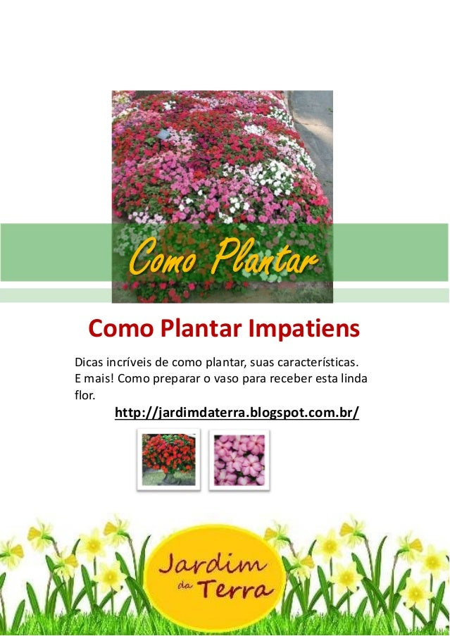 Como Plantar Impatiens http://jardimdaterra.blogspot.com.br/ Como Plantar Impatiens Dicas incríveis de como plantar, suas ...
