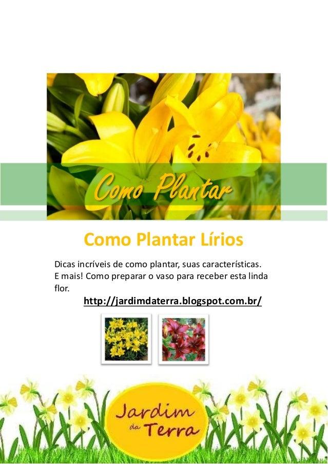 Como Plantar Lírios http://jardimdaterra.blogspot.com.br/ Como Plantar Lírios Dicas incríveis de como plantar, suas caract...