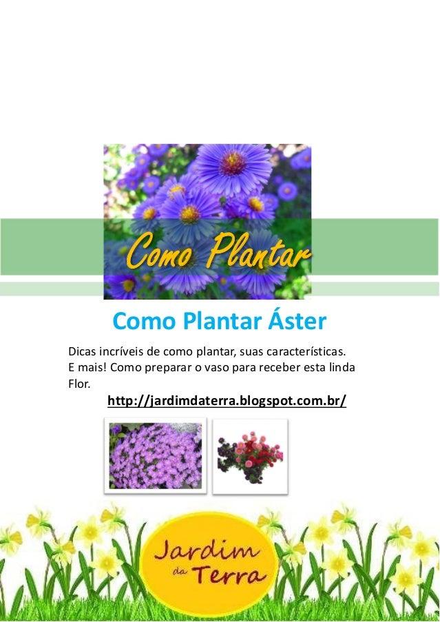 Como Plantar Áster http://jardimdaterra.blogspot.com.br/ Como Plantar Áster Dicas incríveis de como plantar, suas caracter...