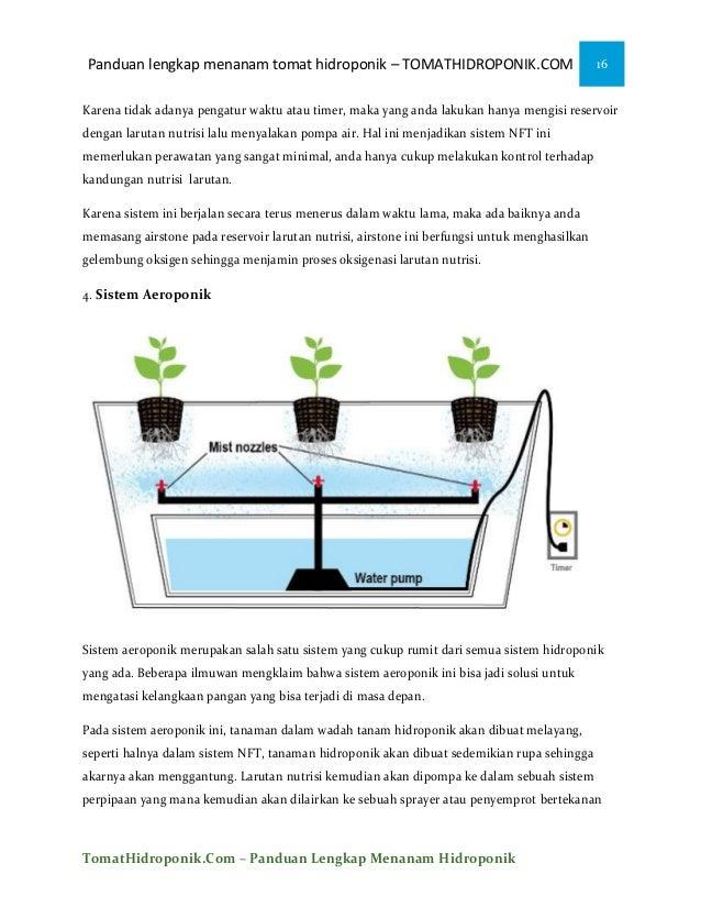 Ebook menanam tomat hidroponik 16 panduan lengkap menanam tomat ccuart Images
