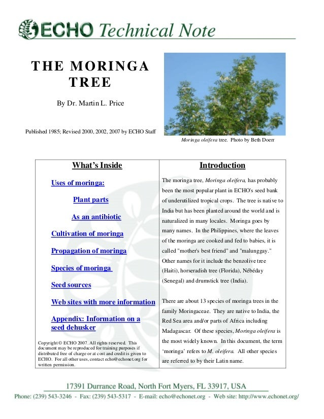 Biological investigations form function diversity and process ebook ebook moringa the moringa tree by dr martin l price published 1985 revised 2000 fandeluxe choice fandeluxe Choice Image