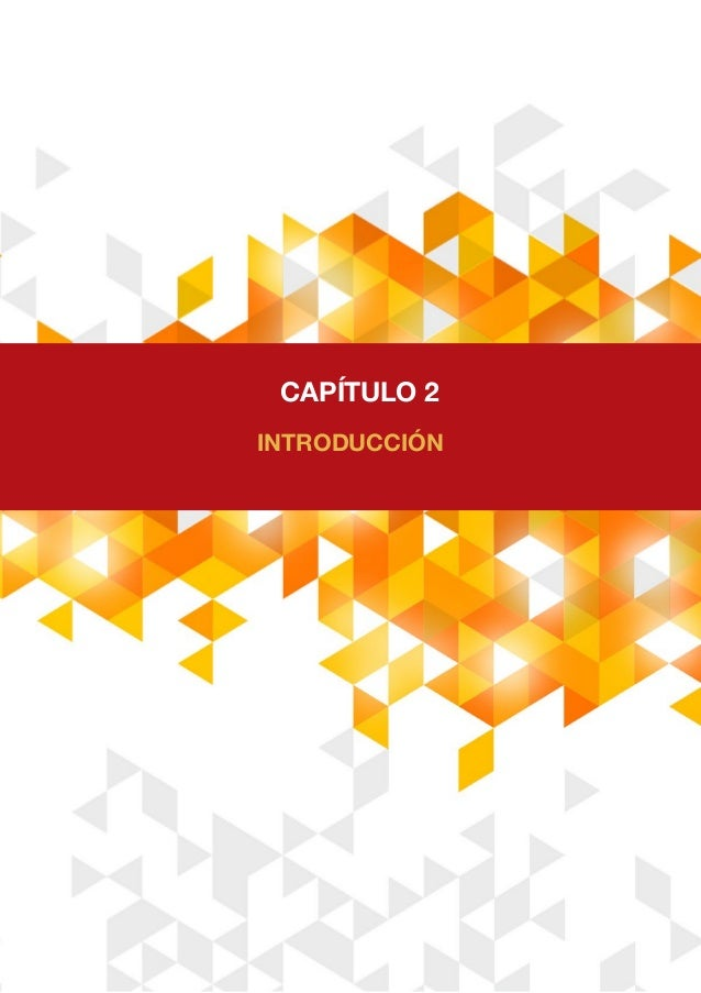 CAPÍTULO 2 INTRODUCCIÓN