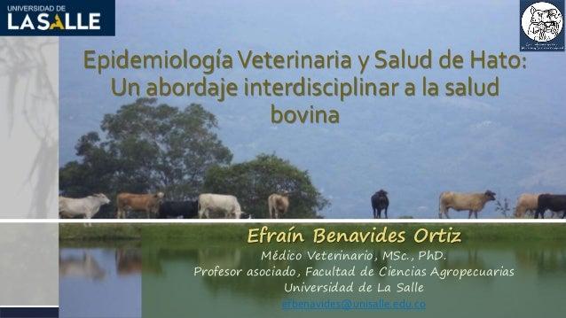 EpidemiologíaVeterinaria y Salud de Hato: Un abordaje interdisciplinar a la salud bovina Efraín Benavides Ortiz Médico Vet...