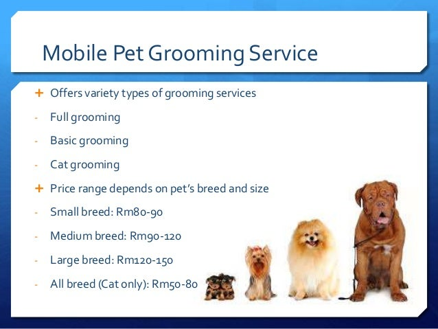 pet grooming and wellness facilities Animal hospital & veterinarian- west flamingo animal hospital offers veterinary medical facility by specialized veterinarian in las vegas.