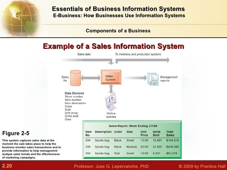 how does information systems support business Decision support and executive information systems give managers the opportunity to gain a better understanding of their business.