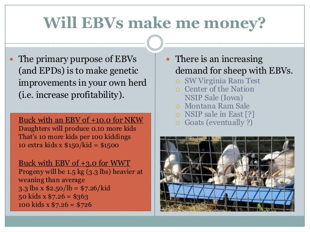 The value of EBVs for the US meat goat industry