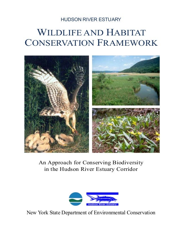wildlife framework An instructional framework provides educators with a list of benchmark statements aligned to common core and national content area standards for a given course or program the missouri fish & wildlife management instructional framework.