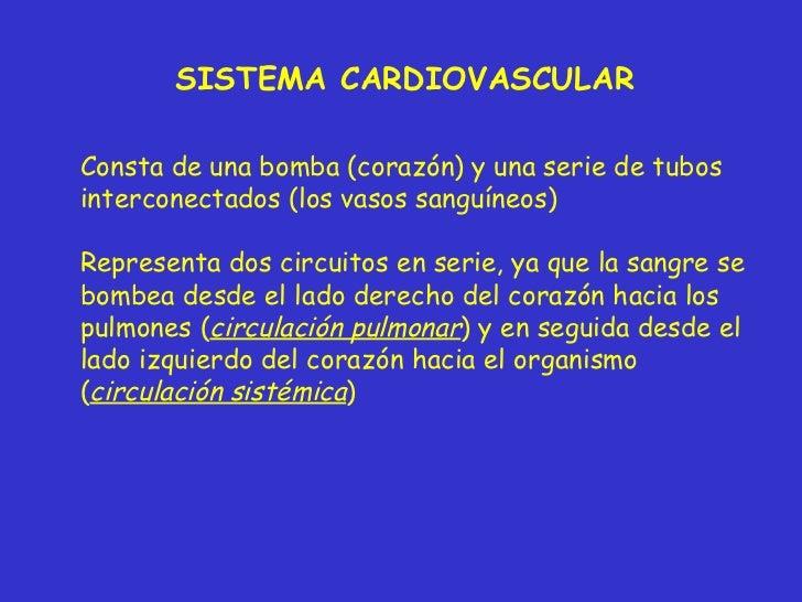 Clase Sistema Cardiovascular Slide 3