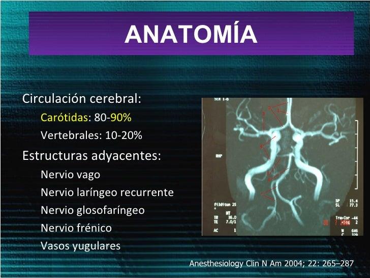 enfermedad carotidea Slide 3