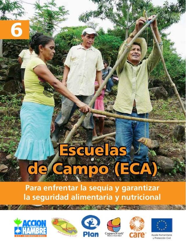 de Campo (ECA)  Para enfrentar la sequía y garantizar  la seguridad alimentaria y nutricional  6  Escuelas