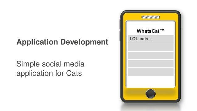 Application Development Simple social media application for Cats WhatsCat™ LOL cats »
