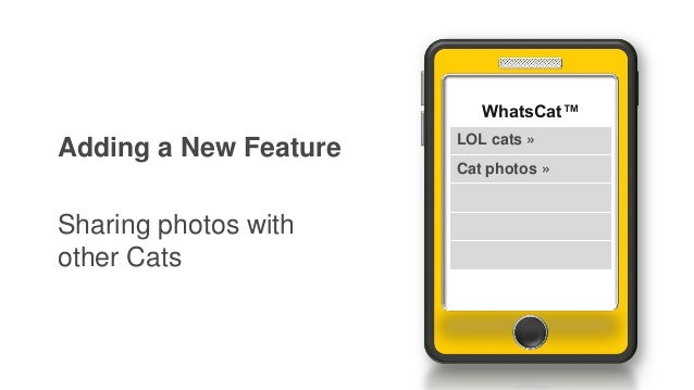 Adding a New Feature Sharing photos with other Cats WhatsCat™ LOL cats » Cat photos »