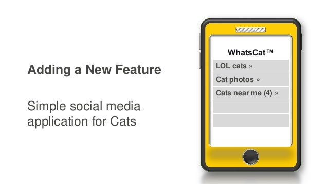 Adding a New Feature Simple social media application for Cats WhatsCat™ LOL cats » Cat photos » Cats near me (4) »