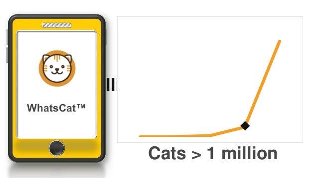 Cats > 1million WhatsCat™ Cats > 1 million