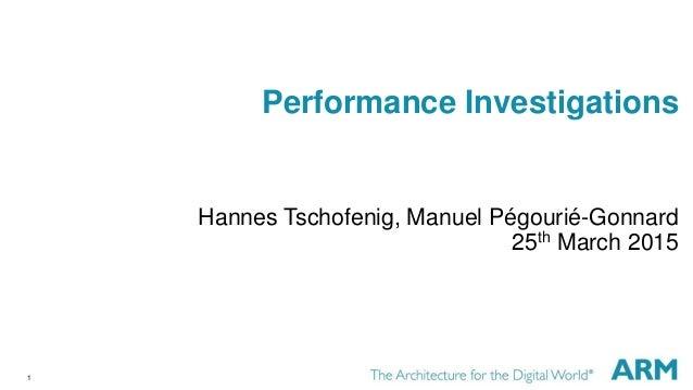 1 Performance Investigations Hannes Tschofenig, Manuel Pégourié-Gonnard 25th March 2015