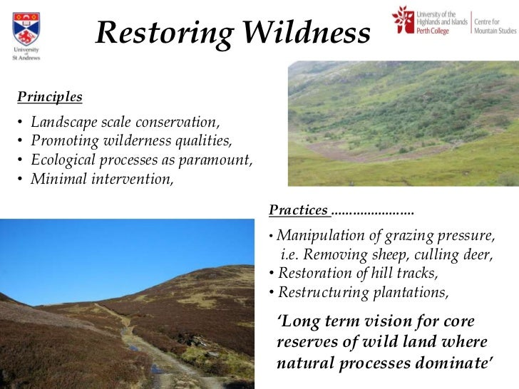 The Return of the Wild: rewilding Scotland Slide 3