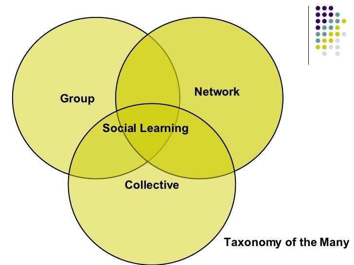 Taxonomy of the Many Social Learning Group Network Collective