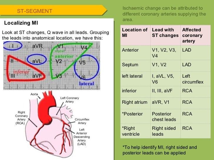 Ekg Coronary Arteries Diagram - Electrical Work Wiring Diagram •