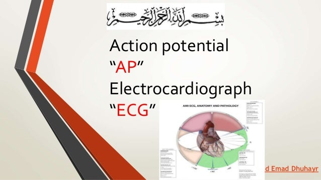 """Action potential """"AP"""" Electrocardiograph """"ECG"""" Hamad Emad Dhuhayr"""