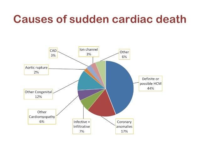 sudden death in athletes essay Skip to main content home journals the lancet the lancet child & adolescent health the lancet diabetes & endocrinology.