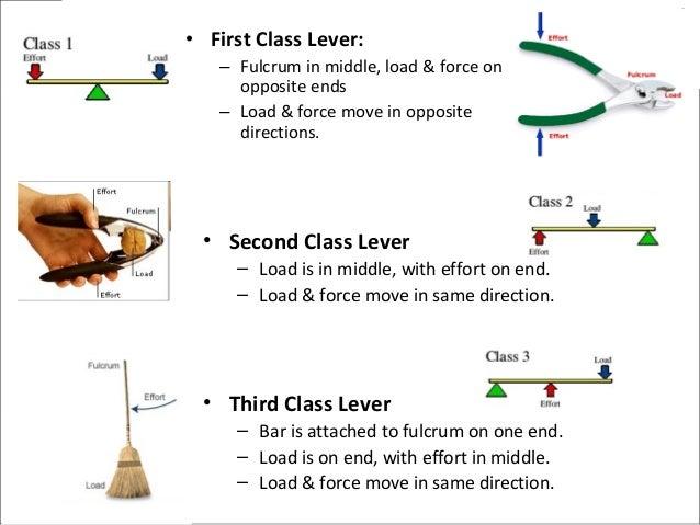 First Class Lever – applecool.info