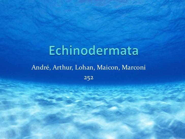 André, Arthur, Lohan, Maicon, Marconi                 252