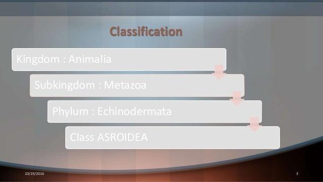 Classification 10/19/2016 3 Kingdom : Animalia Subkingdom : Metazoa Phylum : Echinodermata Class ASROIDEA