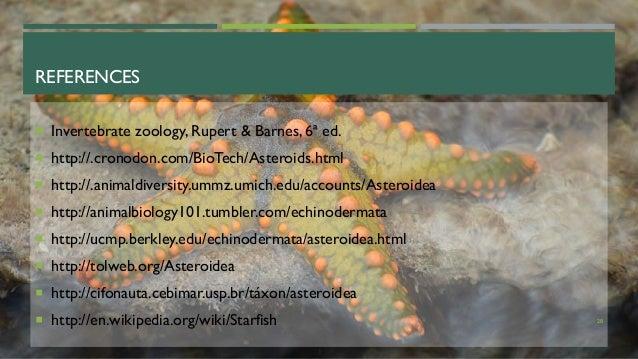 REFERENCES  Invertebrate zoology, Rupert & Barnes, 6ª ed.  http://.cronodon.com/BioTech/Asteroids.html  http://.animald...