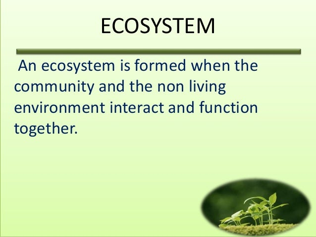 an introduction to the ecology as the study of the living things interacting with its environment Introduction: humans in their ecological  humans in their ecological setting  relationship to its environment ecology was.