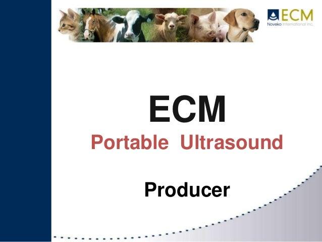 ECMPortable UltrasoundProducer