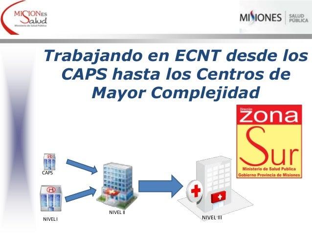 Trabajando en ECNT desde los CAPS hasta los Centros de Mayor Complejidad NIVEL II NIVEL III CAPS NIVEL I