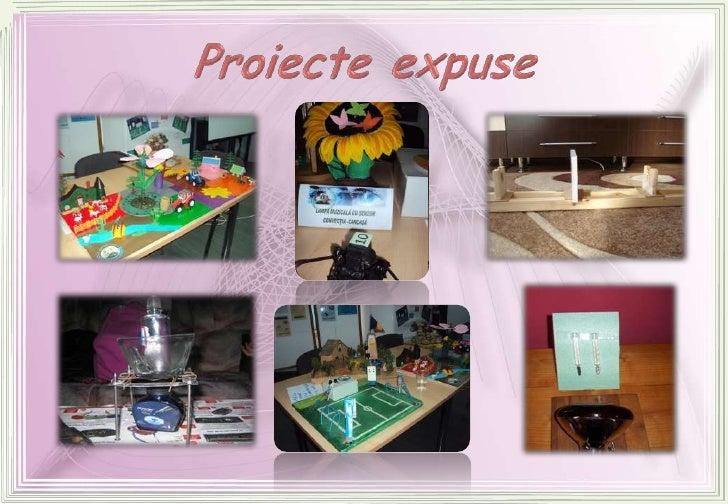 Proiecte expuse<br />