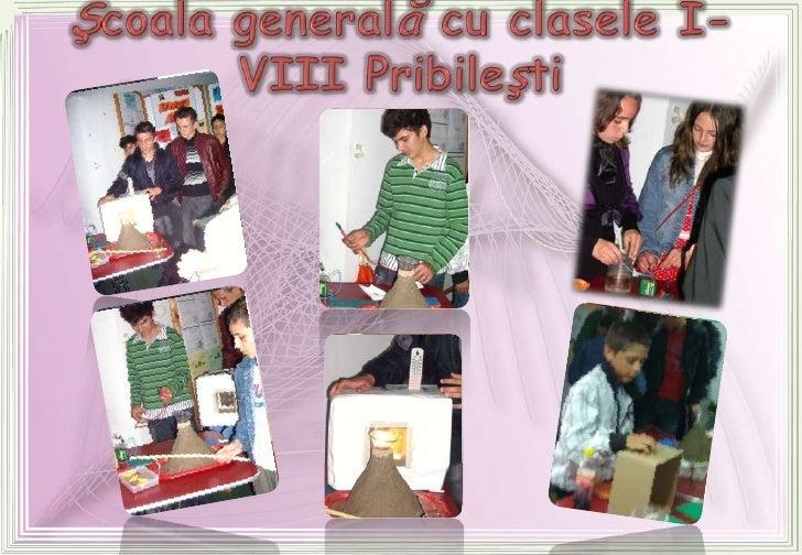 Şcoala generală cu claseleI-VIII Pribileşti<br />