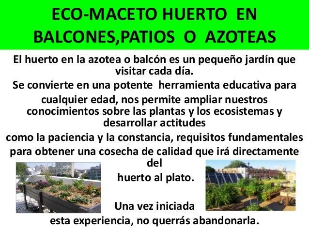 Eco maceto huerto en balcones patios o azoteas 1 for Huerto en azotea