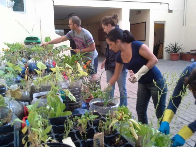 Eco maceto huerto  en balcones,patios  o  azoteas (1)