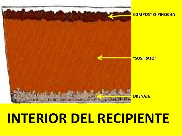 """INTERIOR DEL RECIPIENTE COMPOST O PINOCHA """"SUSTRATO"""" DRENAJE"""