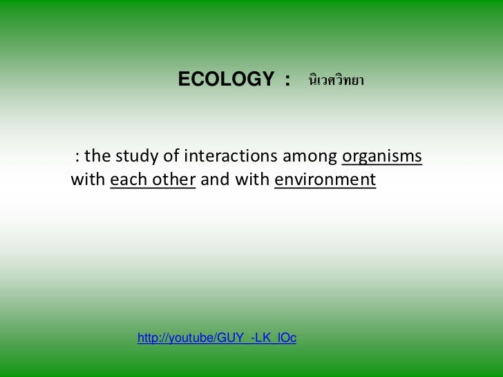 ECOLOGY : นิเวศวิทยา: the study of interactions among organismswith each other and with environment        http://youtube/...