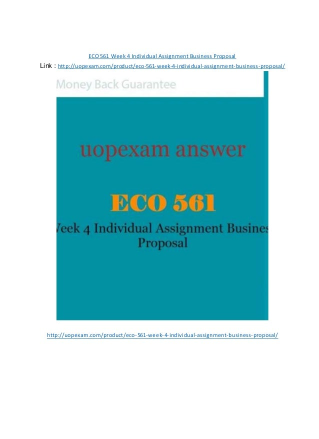 Eco 561 business plan