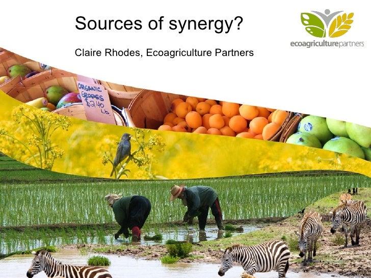 Cultivando con la Naturaleza   Sources of synergy? Claire Rhodes, Ecoagriculture Partners