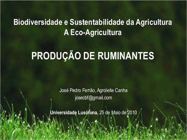 Biodiversidade e Sustentabilidade da AgriculturaA Eco-AgriculturaPRODUÇÃO DE RUMINANTESJosé Pedro Ferrão, Agroleite Canhaj...