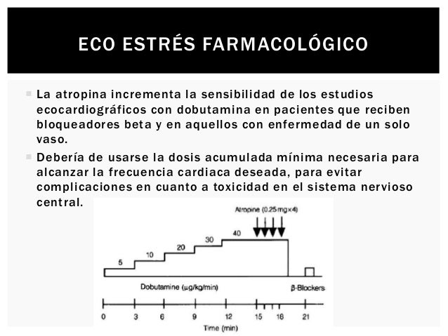 ECO ESTRÉS FARMACOLÓGICO