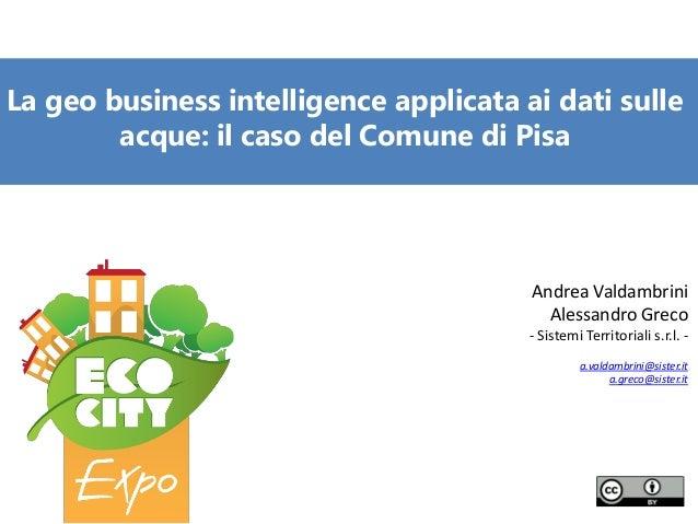La geo business intelligence applicata ai dati sulle acque: il caso del Comune di Pisa  Andrea Valdambrini Alessandro Grec...