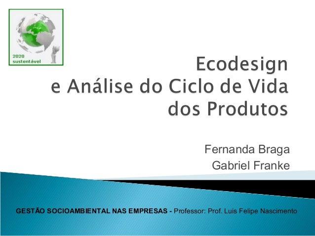 Fernanda Braga Gabriel Franke GESTÃO SOCIOAMBIENTAL NAS EMPRESAS - Professor: Prof. Luis Felipe Nascimento