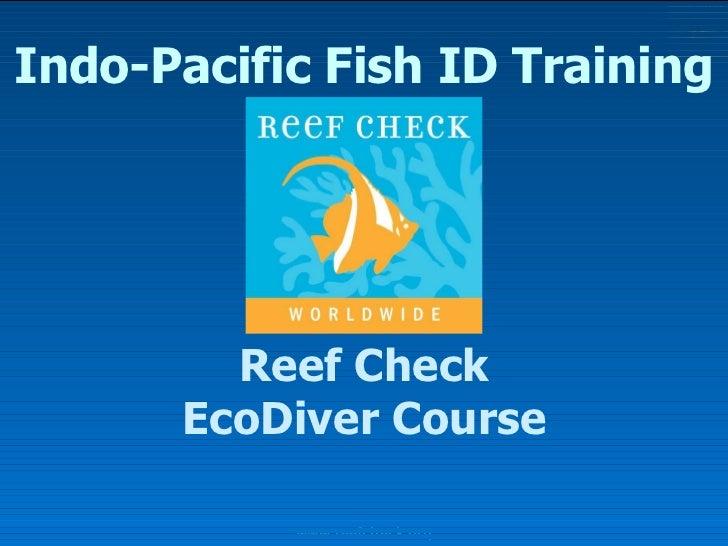 Indo-Pacific Fish ID Training Reef Check EcoDiver Course