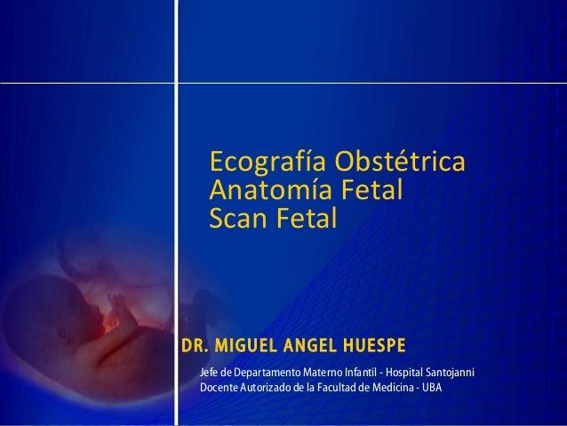 Ecografía Obstétrica  Anatomía Fetal  Scan FetalDR. MIGUEL ANGEL HUESPE Jefe de Departamento Materno Infantil - Hospital S...