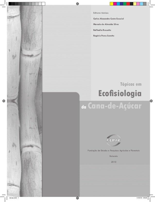 Editores técnicos Carlos Alexandre Costa Crusciol Marcelo de Almeida Silva Raffaella Rossetto Rogério Peres Soratto  Tópic...