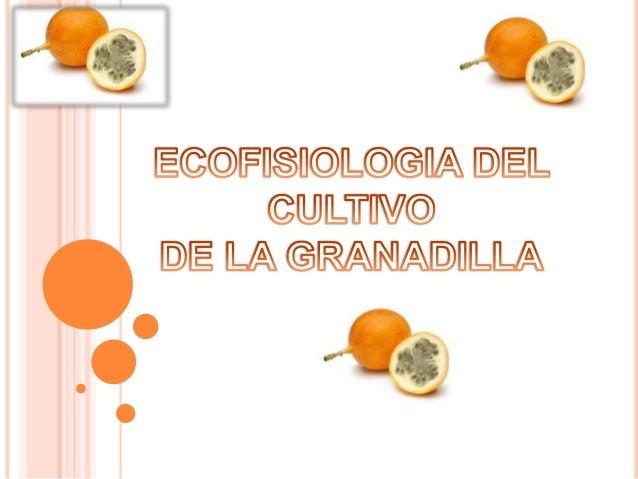   Estudia el crecimiento y desarrollo de las plantas en diferentes ambientes aplicando los conocimientos de la fisiología...