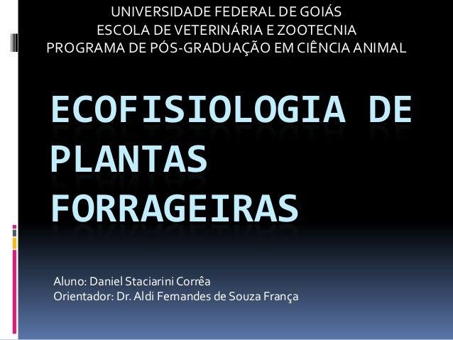 ECOFISIOLOGIA DEPLANTASFORRAGEIRASAluno: Daniel StaciariniCorrêaOrientador: Dr. Aldi Fernandes de Souza FrançaUNIVERSIDADE...