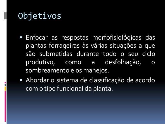 Ecofisiologia de plantas forrageiras Slide 3